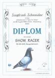 Urkunden  / Diplome 1999