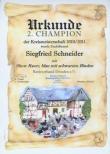 Urkunde 2010/2011