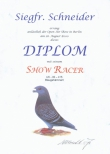 Urkunden / Diplome ab 2000