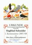 Urkunden / Diplome 2006 - 2008